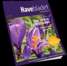 Havebladet