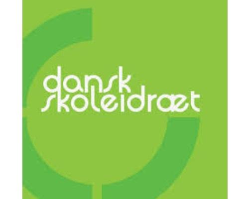 Dansk Skoleidræt